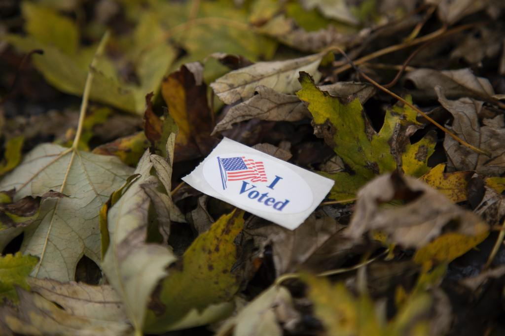 election, voting, election results
