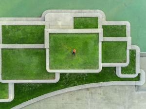 flexibility and unfamiliarity, maze of green